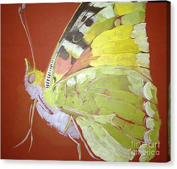 Butterfly Basic In Work Canvas Print by Art Ina Pavelescu