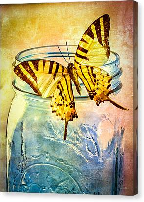 Butterfly Blue Glass Jar Canvas Print by Bob Orsillo