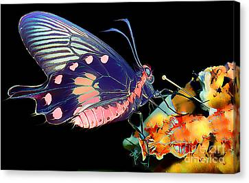 Butterfly Brushed In Water And Wind Canvas Print by Wernher Krutein