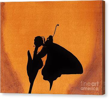 Canvas Print featuring the drawing Butterfly by D Hackett
