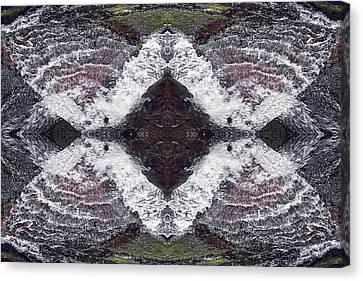 Butterfly Effect Canvas Print by Dawn J Benko