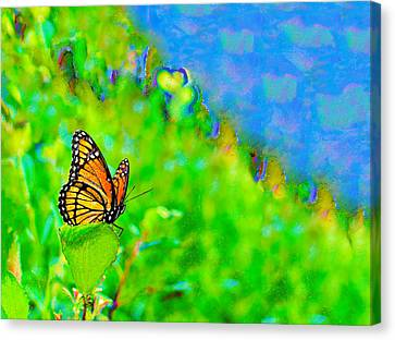 Canvas Print featuring the photograph Butterfly Fantasy by Marianne Campolongo