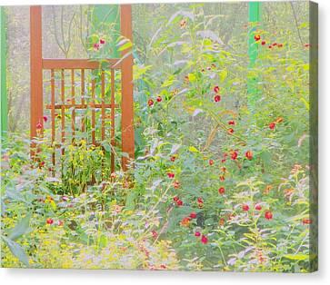 Butterfly Garded II Canvas Print