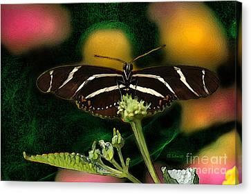 Canvas Print featuring the digital art Butterfly Garden 06 - Zebra Heliconian by E B Schmidt