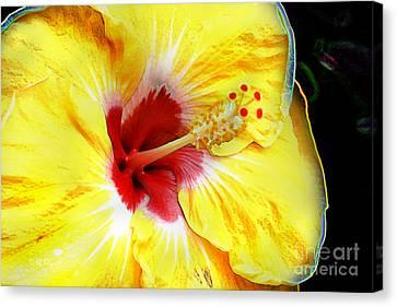 Canvas Print featuring the digital art Butterfly Garden 07 - Hibiscus by E B Schmidt