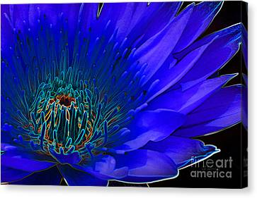 Canvas Print featuring the digital art Butterfly Garden 11 - Water Lily by E B Schmidt