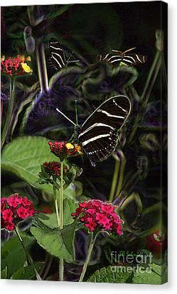 Canvas Print featuring the digital art Butterfly Garden 19 - Zebra Heliconian by E B Schmidt