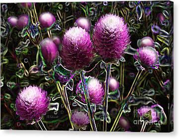 Canvas Print featuring the digital art Butterfly Garden 20 - Globe Amaranth by E B Schmidt