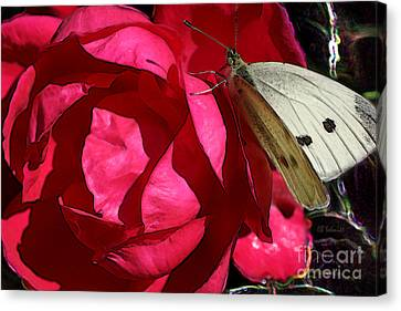Canvas Print featuring the digital art Butterfly Garden 21 - Cabbage White by E B Schmidt
