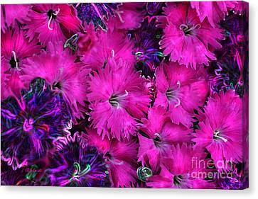 Canvas Print featuring the digital art Butterfly Garden 23 - Carnations by E B Schmidt
