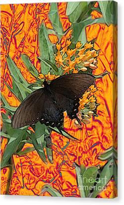 Canvas Print featuring the digital art Butterfly Garden 25 - Spicebush Swallowtail by E B Schmidt
