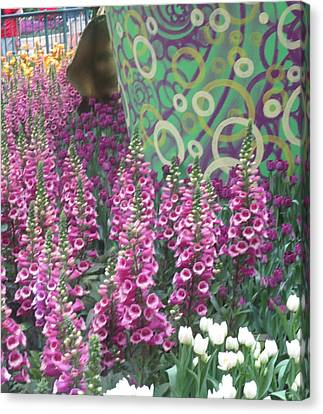 Canvas Print featuring the photograph Butterfly Garden Purple White Flowers Painted Wall by Navin Joshi