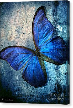 Butterfly Canvas Print by Mark Ashkenazi