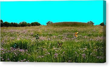 Butterfly Meadow Canvas Print by Larry Trupp