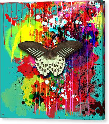 Butterfly Montage Canvas Print by Gary Grayson