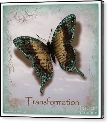 Butterfly Of Transformation Canvas Print by Bobbee Rickard