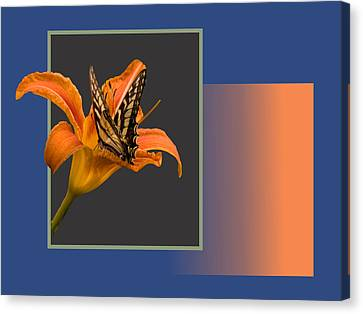 Butterfly On Day Lily Canvas Print