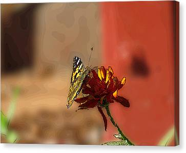 Butterfly On Flower Canvas Print