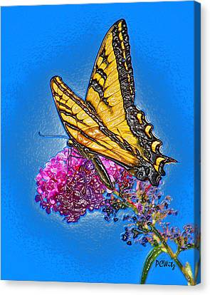 Canvas Print featuring the photograph Butterfly by Patrick Witz