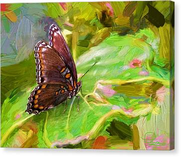 Butterfly - Red-spotted Purple Canvas Print
