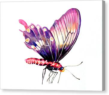 Butterfly Canvas Print by Rossi Zheng