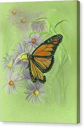 Butterfly Canvas Print by Ruth Seal