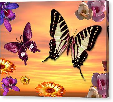 Butterfly Sunset Canvas Print by Alixandra Mullins