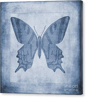 Flying Animals Canvas Print - Butterfly Textures Cyanotype by John Edwards