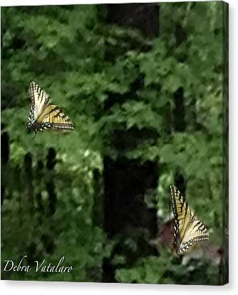 Butterfly Waltz Canvas Print by Debra     Vatalaro