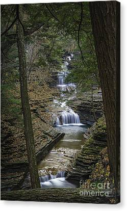 Buttermilk Falls In Autumn IIi Canvas Print