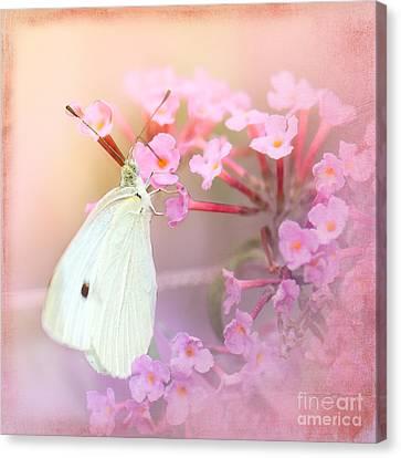Butterrfly Joy Canvas Print