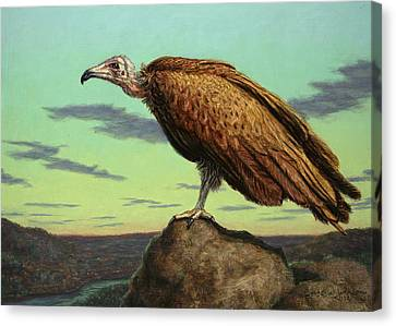 Buzzard Canvas Print - Buzzard Rock by James W Johnson