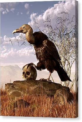 Buzzard Canvas Print - Buzzard With A Skull by Daniel Eskridge