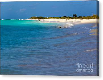 Bvi At Its Best Canvas Print by Beverly Tabet