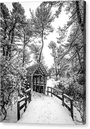Canvas Print featuring the photograph Bw Covered Bridge In The Snow by Steve Zimic