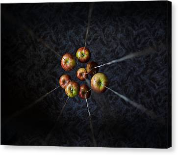 Canvas Print featuring the photograph By A Thread by Aaron Aldrich