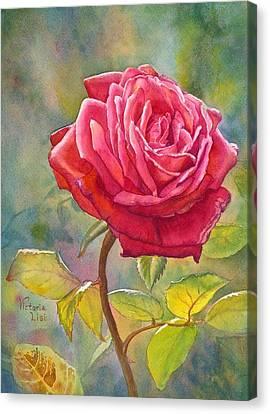 Crimson Rose I Canvas Art Print