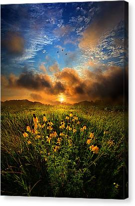 By The Dawns Early Light Canvas Print by Phil Koch