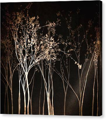 By The Light Of The Moon Canvas Print by Susan Maxwell Schmidt