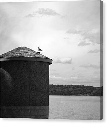 Canvas Print featuring the photograph By The Water by Kjirsten Collier