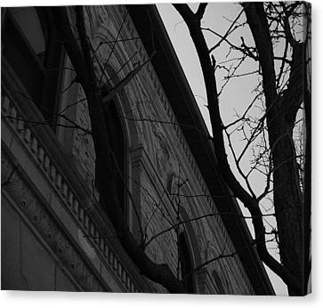 Bystander Perspective Canvas Print