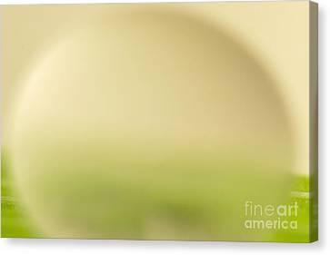 Vivid Canvas Print - C Ribet Orbscape 0256 by C Ribet