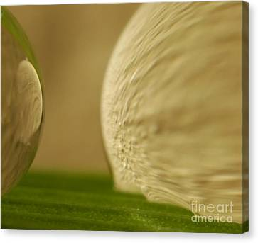 C Ribet Orbscape 0277 Canvas Print by C Ribet