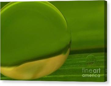 C Ribet Orbscape 0351 Canvas Print by C Ribet
