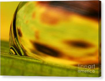 C Ribet Orbscape 0835 Canvas Print by C Ribet