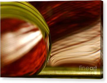 C Ribet Orbscape 1186 Canvas Print by C Ribet
