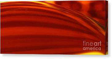 C Ribet Orbscape 1241 Canvas Print by C Ribet