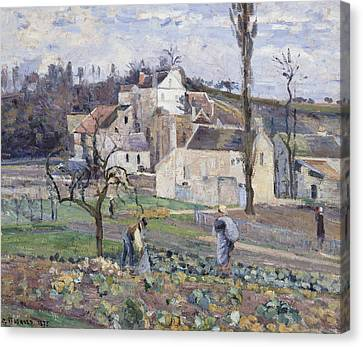 Cabbage Patch Near The Village Canvas Print by Camille Pissarro