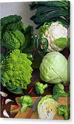 Cabbages -clockwise- Broccoli Canvas Print