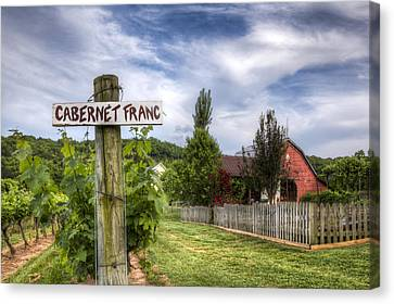 Cabernet Canvas Print by Debra and Dave Vanderlaan